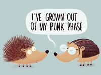 Punk phase