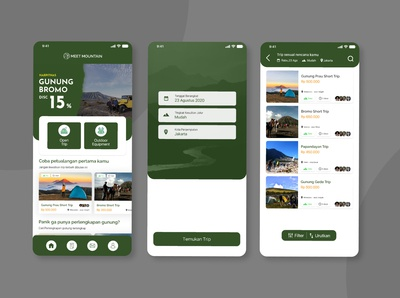 Meet Mountain (travel app)