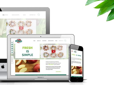 Nature Seal Website Design and Front-End Development mobile first homepage landing page web design front-end development