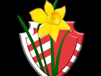 Glamorgan team logo flower design concept icon jiga logo graphic design creative duggout cricket logo cricket app cricket