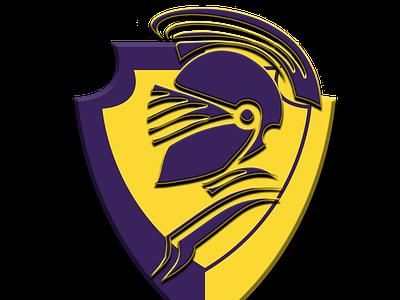Trinbago Knight Riders team logo ui illustration design logo graphic design creative duggout cricket logo cricket app cricket