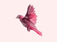 Bird Vector Design - Blend Tool, Adobe Illustrator