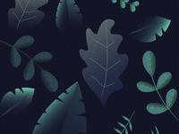 Leaf Design - Adobe Illustrator