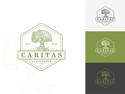 Caritas Modern logo colorful logo vintage logo brand design 3d graphic design craft design tree logo logo mark logo type company logo minimalist logo modern logo logo design design logo flat vector brand identity branding