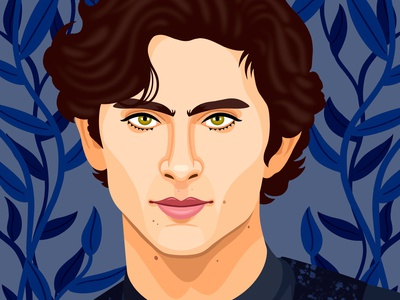 Timothee Chalamet vector editorial colorful digital art childrens books graphic art illustrator editorial illustration nicole wilson illustration