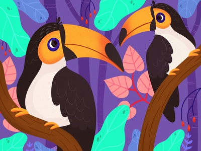 Toucans design colorful digital art editorial childrens books graphic art illustrator editorial illustration nicole wilson illustration