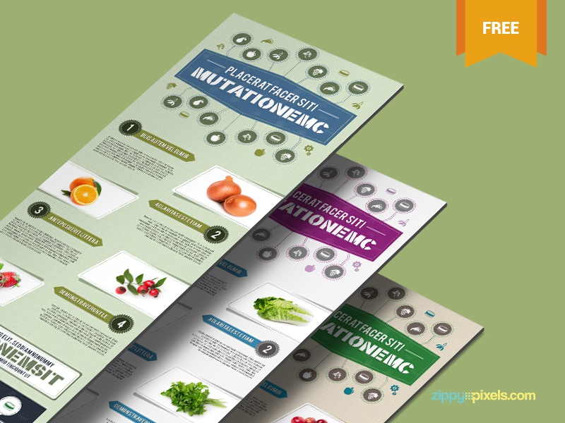 Free Infographic PSD Template - Nutrition Theme vector elements psd template infographic freebie free