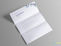 image 1 - Free US Letter Paper Mockup