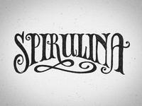 Chalk Mural Lettering - Spirulina