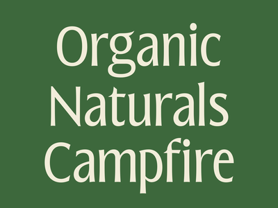 Blunch (WIP) ux ui illustration logo emirates identity branding luxury qatar lettering typography brand camping naturals organic green