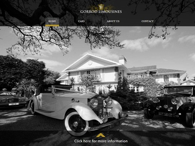 Web design for a luxury limo service web design cars limo gold