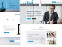 Stray - Business Landing Page