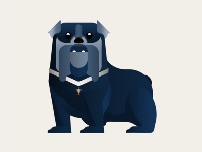 The Western Bulldogs dog minimal illustration vector flat design