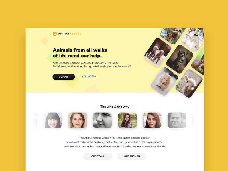 Animal Rescue website web ux ui yellow friendly design website animal npo ngo