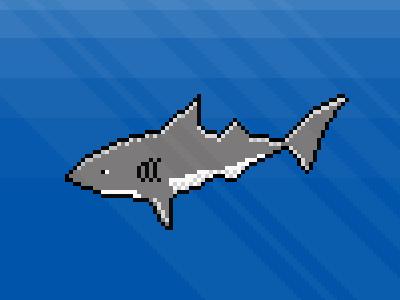 Shark dribbble 400