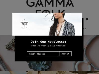 Newsletter Signup monospace popup newsletter