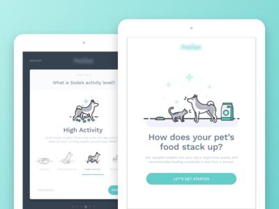 iPad Survey dog cat pet survey ipad