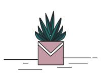 Illustration of  succulent