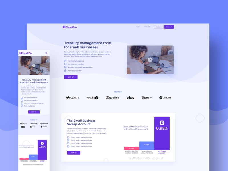 SteadiPay - Product Landing Page Design banking cash management cash app product design ui design ux design financial services fintech startup