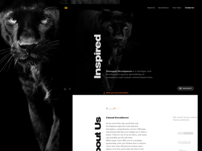Dev agency site black dark typography ecommerce responsive web clean bw modern development agency design