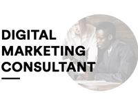 Digital Marketing Consultant Agency Web UI