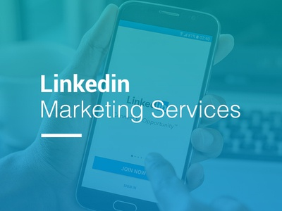 Linkedin Marketing Services Web Page Graphics linkedin marketing agency illustration marketing design web branding