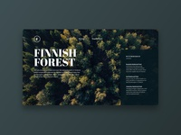 🌲Finnish Forest Experience