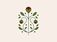 peonies // flower study peonies flower flowers illustration