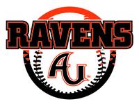 Anderson Baseball