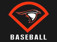 Ravens Baseball