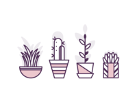 Basic Plants