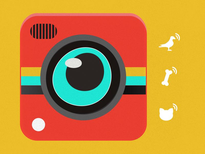 Flat Camera Icon icon app flat mobile