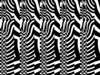 chuckbees_black_lines glitch