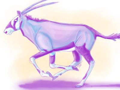 Gemsbok sketch practice daily sketch digital gemsbok oryx antelope south africa
