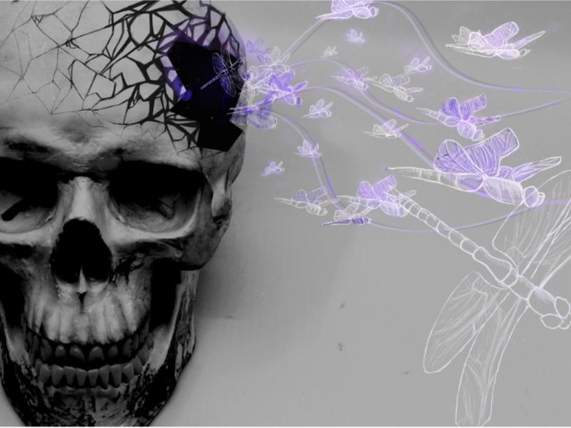 Stream photoshop dragonfly skull gritty