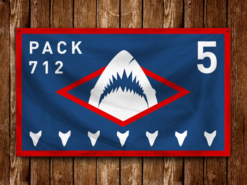 Pack 712 Flag scouts shark flag