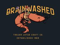 Shrimp Brainwashed Design