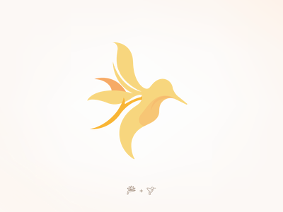 Hummingbird variation vector logotype branding design graphic design illustration logodesign branding design logo brand identity