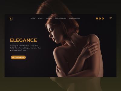 Landing Page UI For Modelling Website