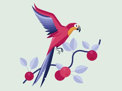 Parrot bird nature parakeet parrot flat illustration vector
