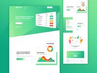 Credit Card Finance Website Design