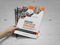 Education Brochure Catalog Design