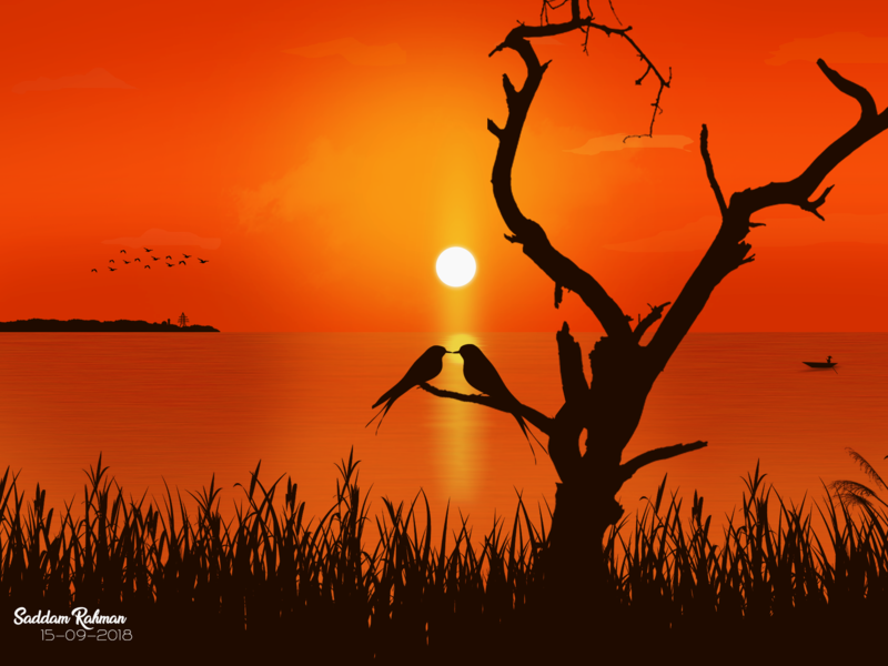 💙 Love birds in the Sunset 💙 husband and wife nature sky beautiful love sunset couple romantic illustration lovebirds