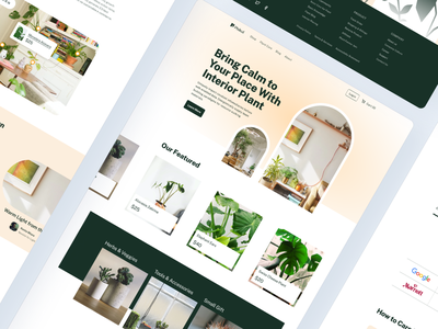 Interior Plant Shop Website landingpage landing ecommerce shop pot product plants plant care ui website webdesign website design interior plant monstera garden furniture store furniture