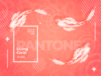 Koi Fish Pantone 2019