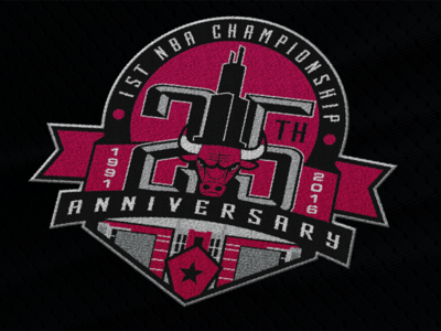 Bulls 25th Anniversary Patch