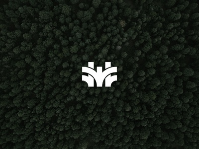 Wair graphic thick detroit tree nature design icon type logo