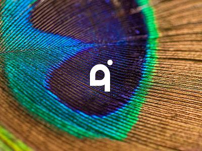 Pavo graphic illustration nature peacock bird design icon logo