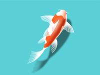 Kai Fish