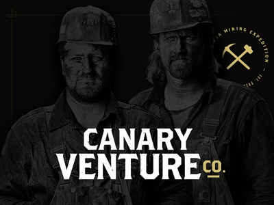 Canary Venture Co. startup branding naming accelerator incubator startup venture canary